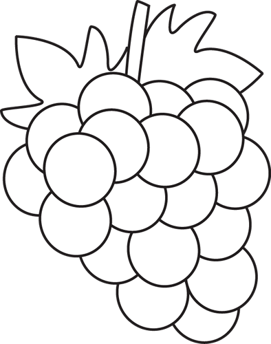 image Image result for fruit. Grapevine clipart black and white