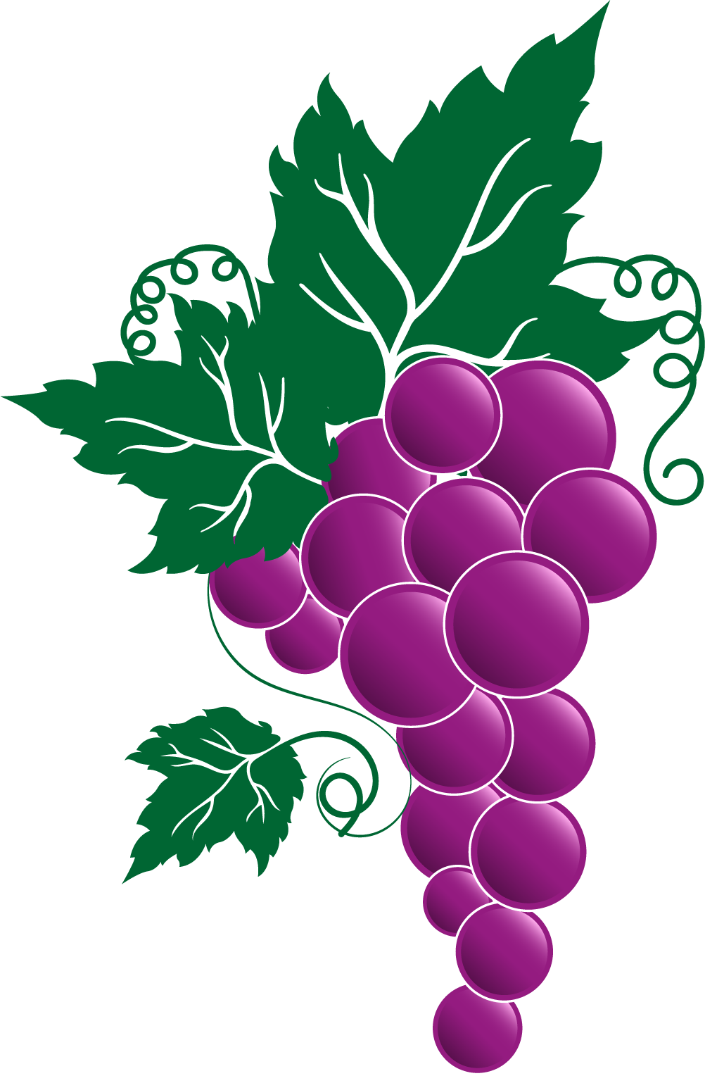 jpg royalty free download Grapevine clipart grape stomping. Png transparent free images