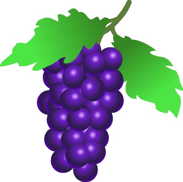 svg transparent download Grapevine clipart greps. Grapes vine clip art
