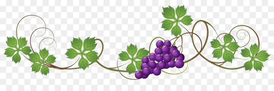 png black and white stock Flower art grape wine. Grapevine clipart line