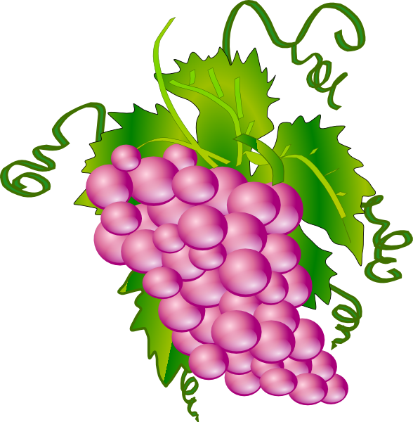 clipart royalty free stock Grapevine clipart purple food. Grapes clip art at