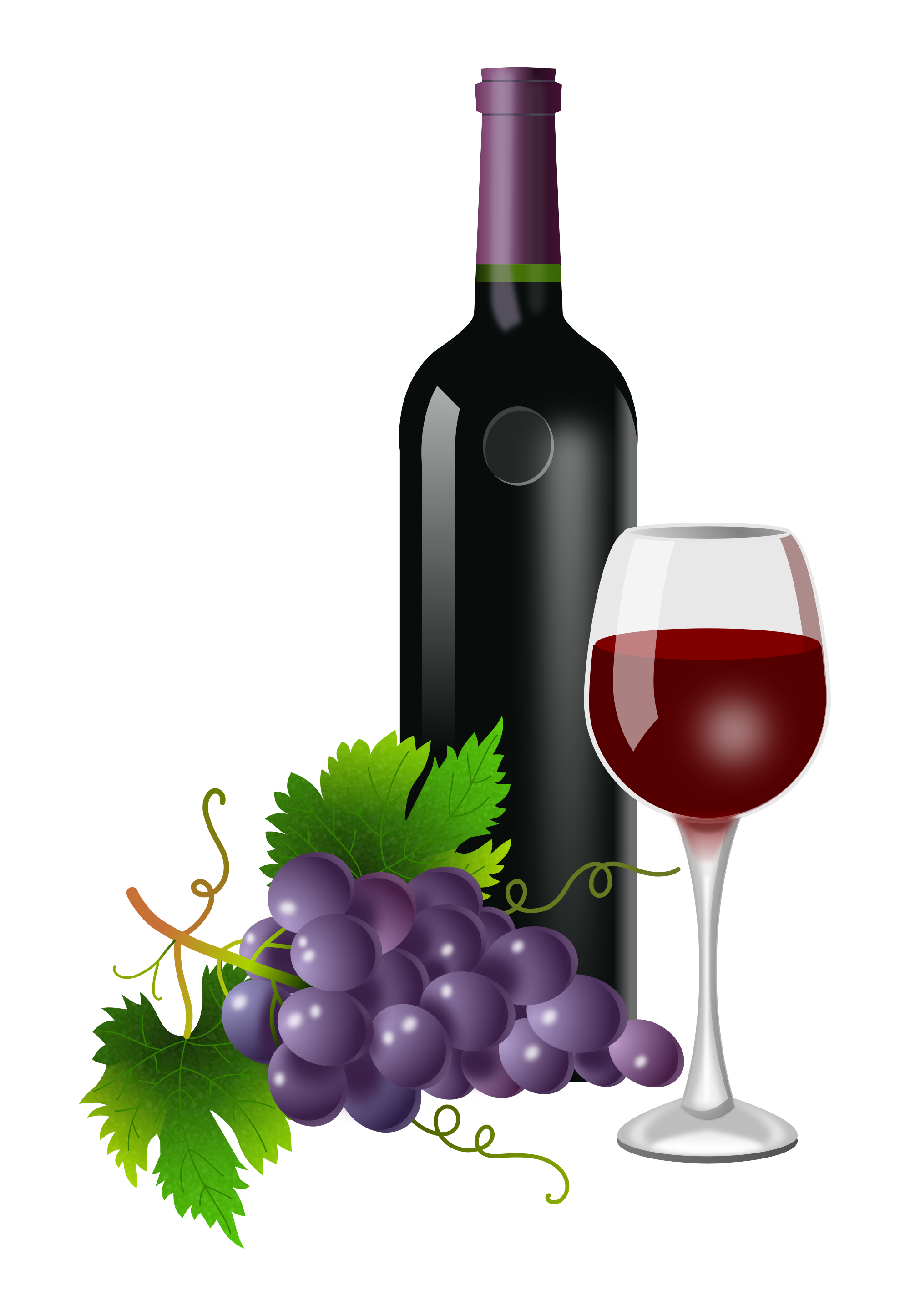 clip black and white stock Grapevine clipart wine grape. Free for download on