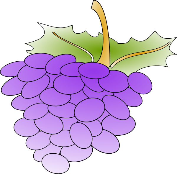 banner royalty free Grapes clip art at. Grapevine clipart wine grape