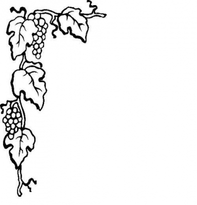 vector freeuse stock Grapevine clipart winery. Free grape vine silhouette