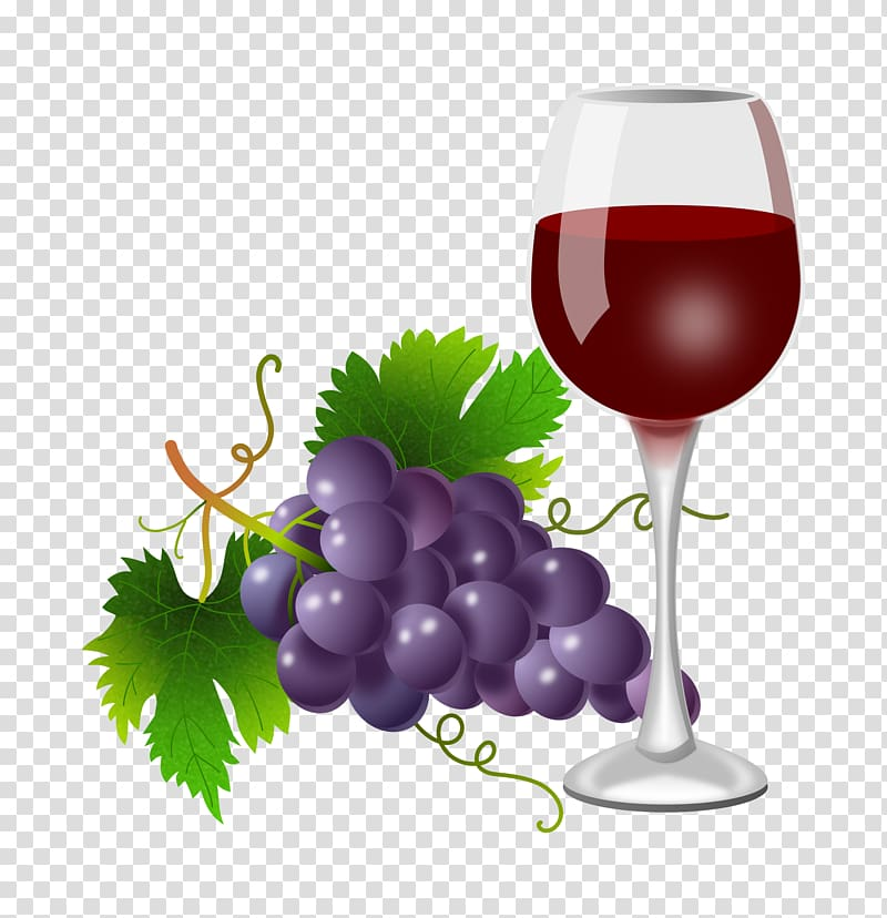 png royalty free stock Grapevine clipart winery. White wine red common