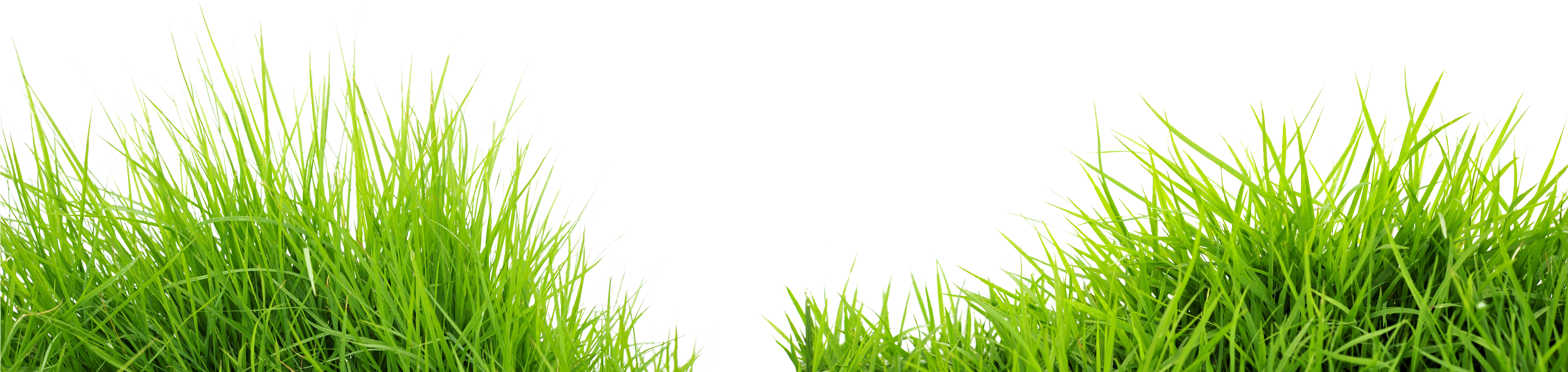 banner black and white library Grass and sky background clipart. Png image purepng free