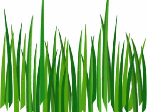 jpg black and white stock  free images photos. Grass clipart