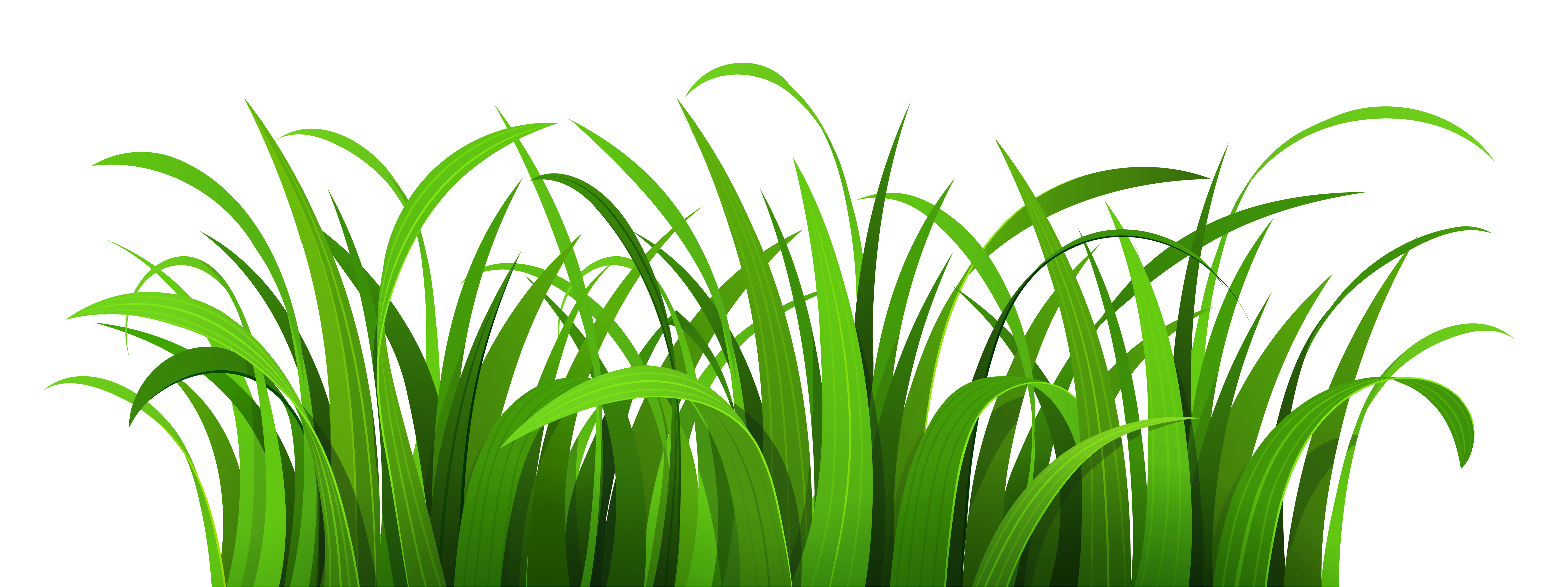 free stock Lawn clipart tall grass. Jungle free on dumielauxepices.