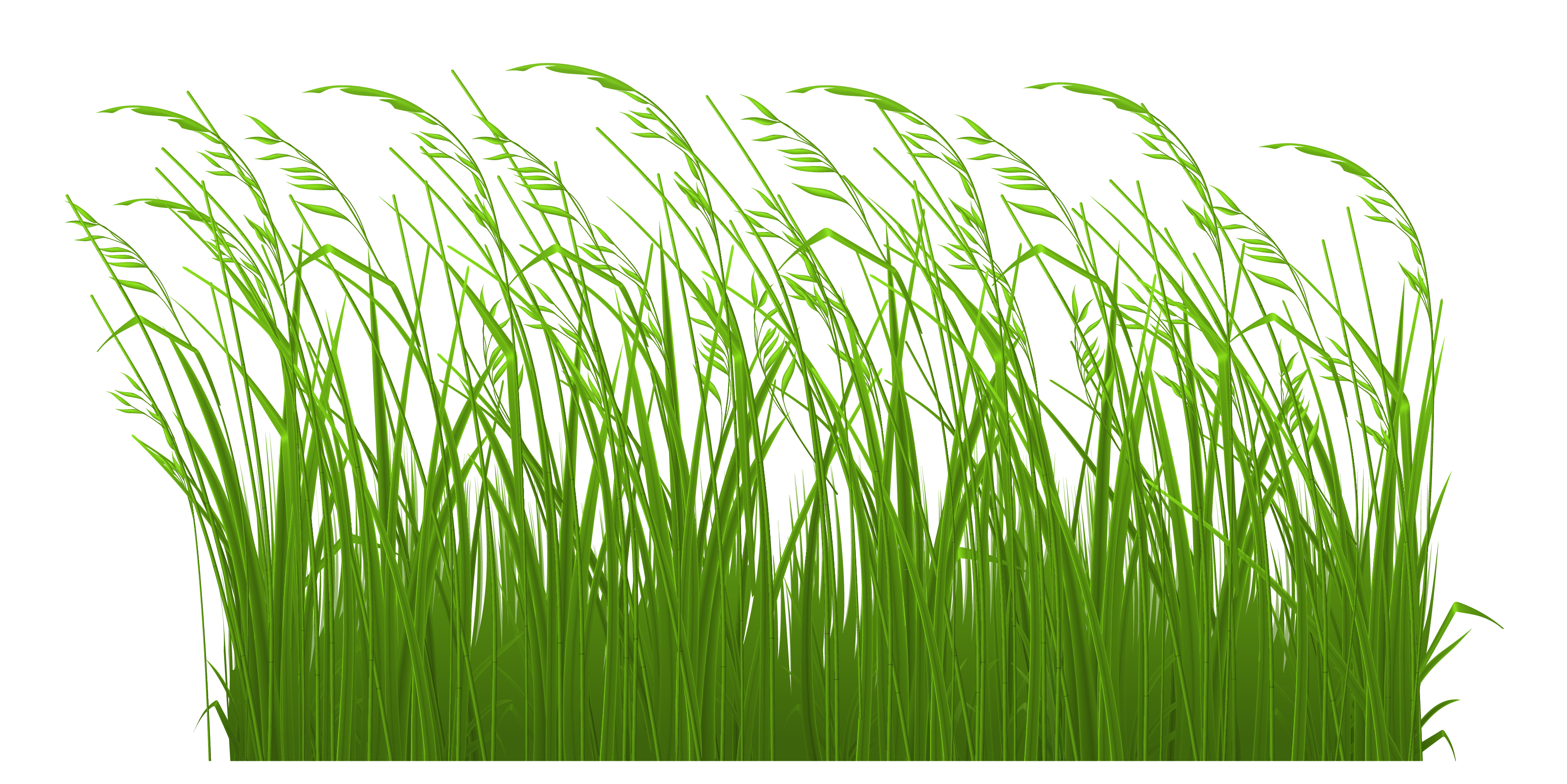 picture royalty free stock Grass clipart. Stake in