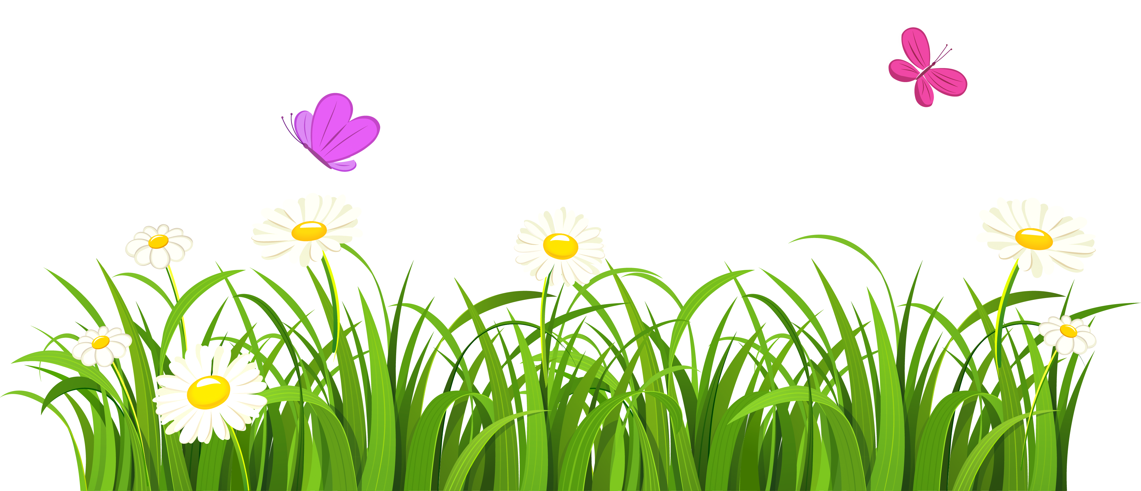 clipart stock And butterflies png gallery. Grass clipart cute