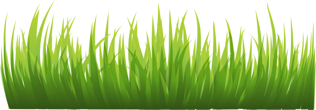 graphic library stock Grass clipart fodder. Free on dumielauxepices net