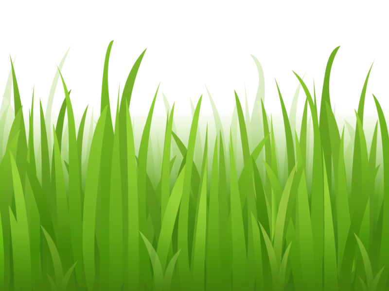 banner freeuse Photo gallery panda free. Grass clipart fodder