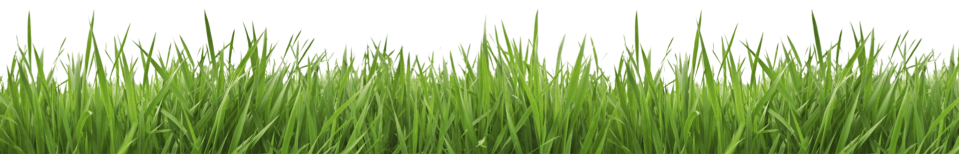 banner black and white library Landscaping clipart grass cutting. Brothers trimm lawn care.