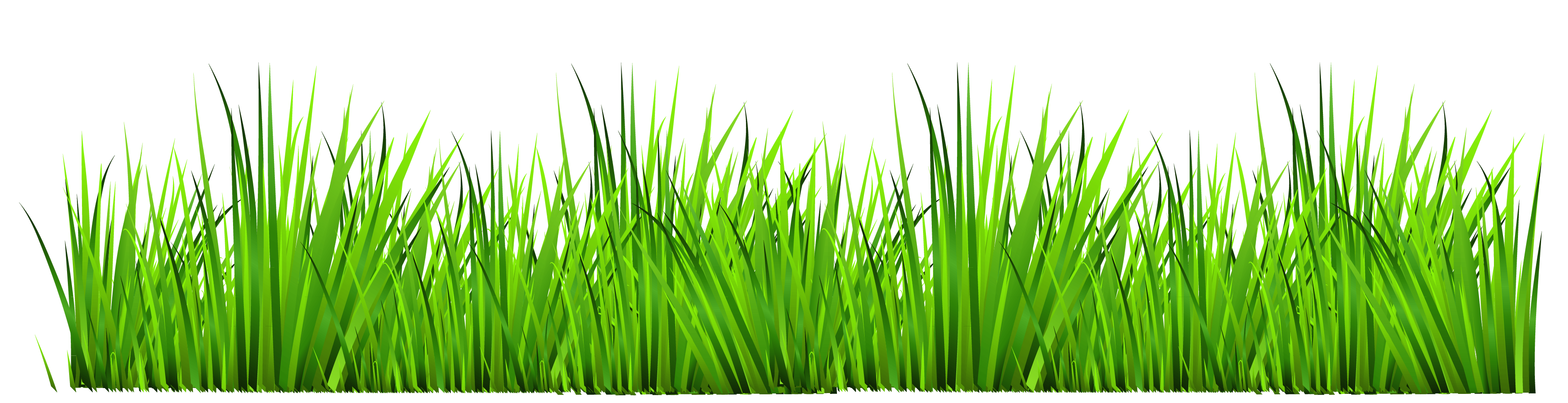 clip royalty free stock Blue iris clip art. Lawn care clipart long grass