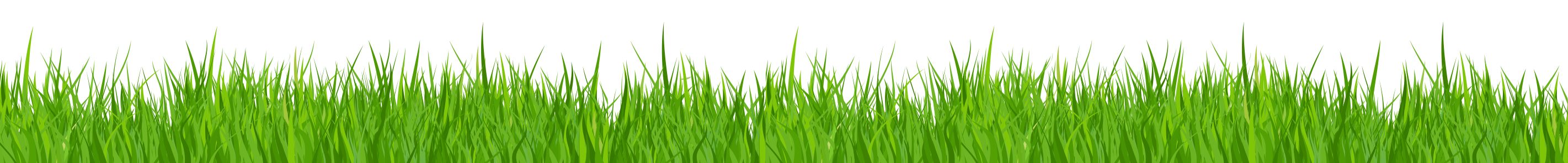 clipart library stock grass clipart no background