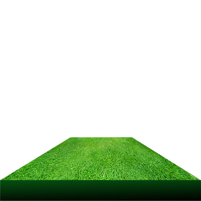 library Grass clipart road.  d png file