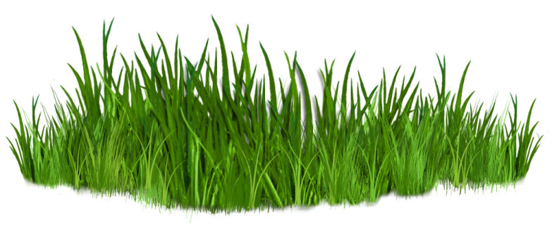svg freeuse library Path ground png picture. Grass clipart road