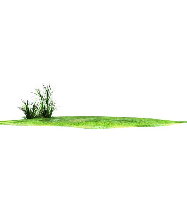 jpg transparent download Horizon lands stock png. Grass patch clipart