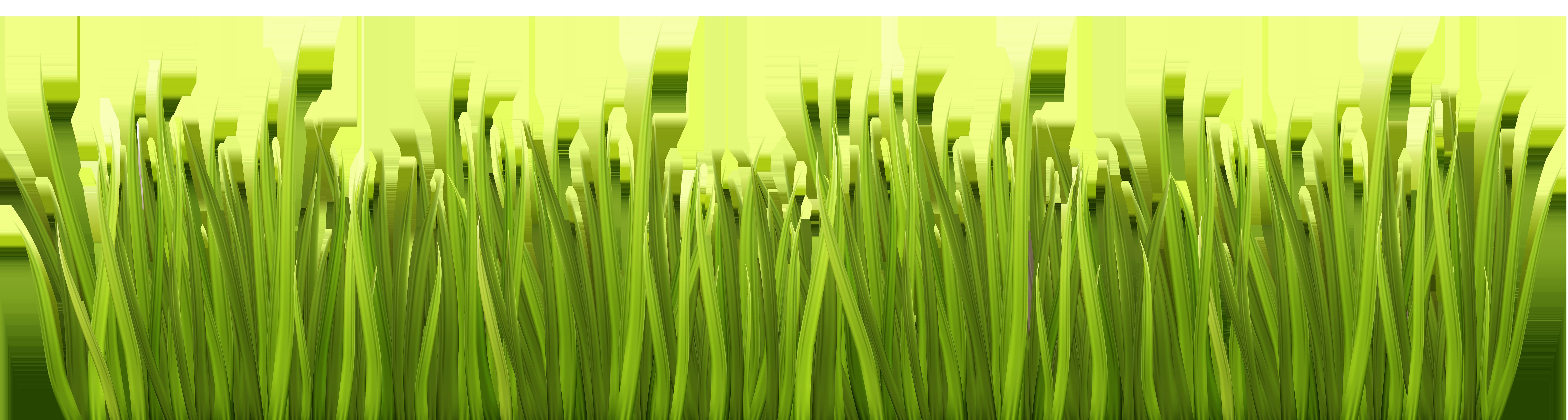clip download Spring Grass PNG Transparent Clip Art Image
