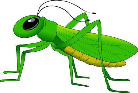 picture black and white Grasshopper clipart. Look at hq clip.