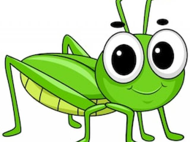 png freeuse library . Grasshopper clipart invertebrate.