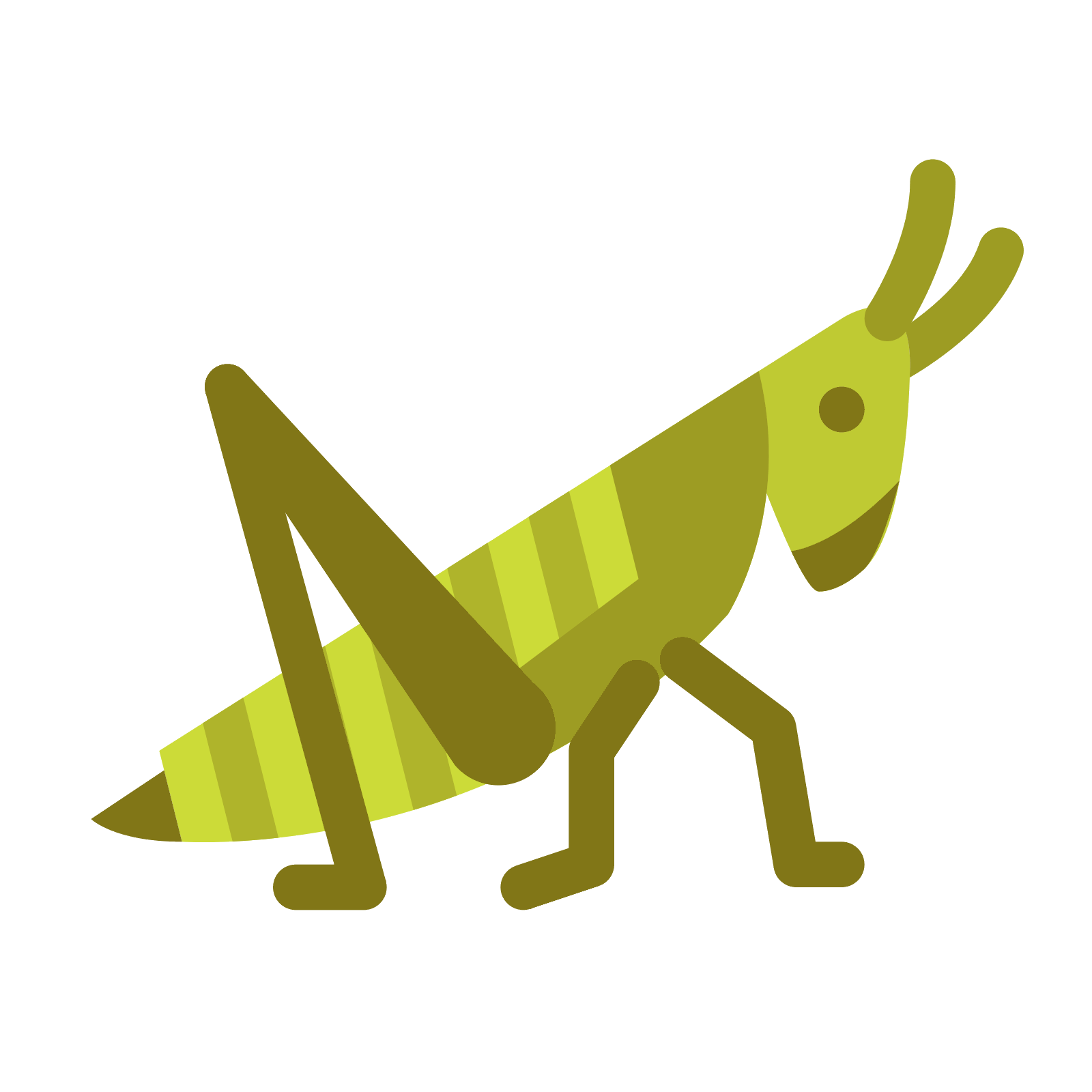 graphic free stock Grasshopper clipart page. Head free on dumielauxepices