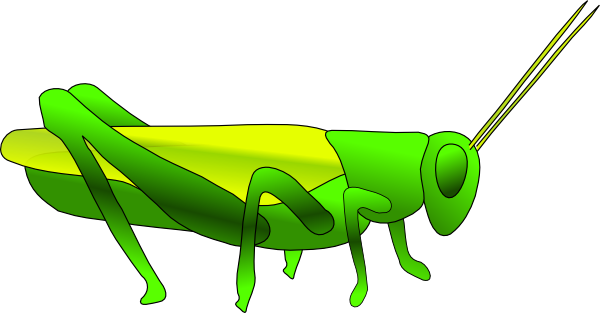 vector royalty free download . Grasshopper clipart painting