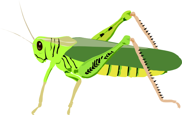 graphic black and white download Grasshopper clipart transparent. Png