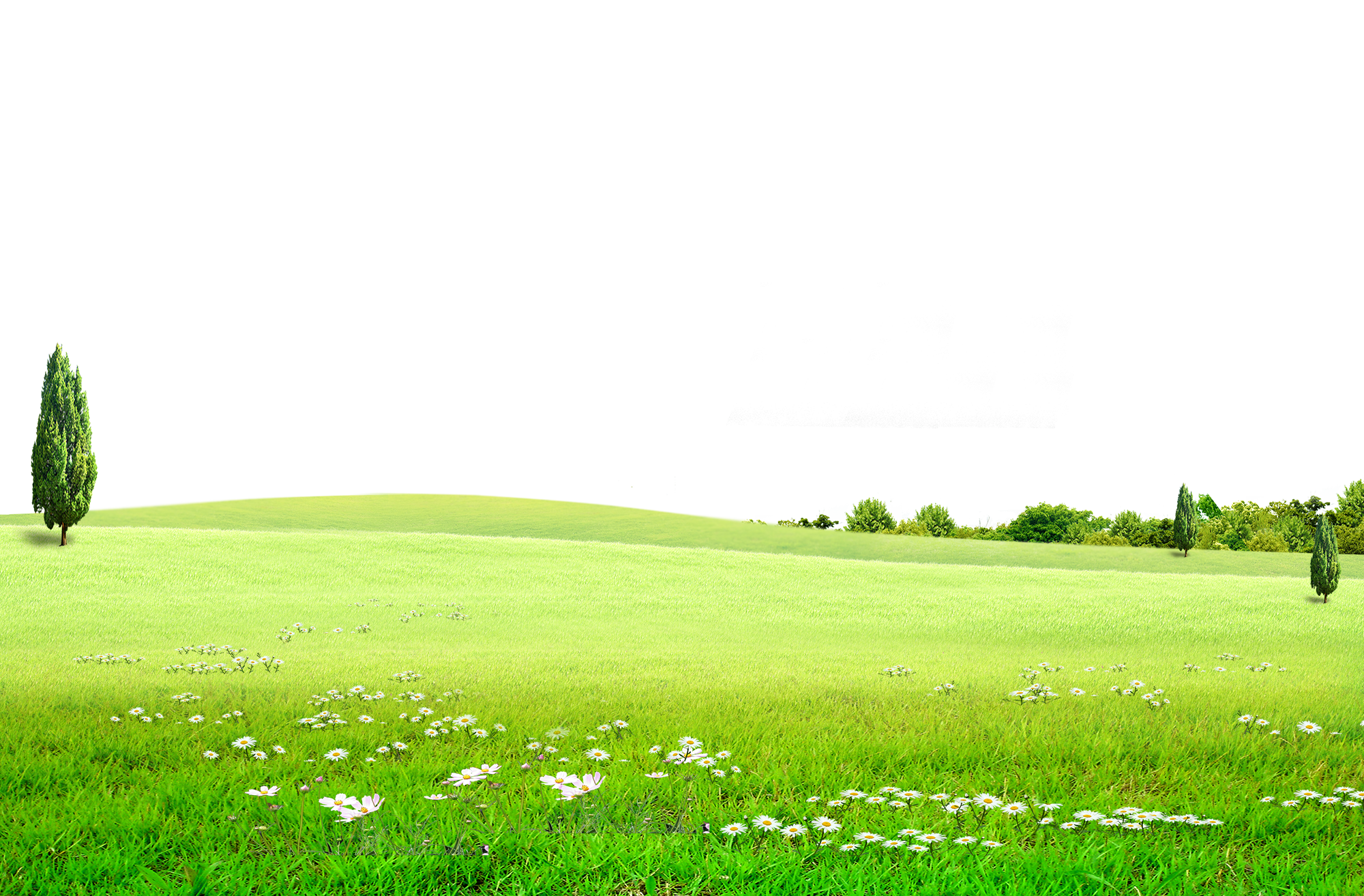 clip art transparent stock Land drawing grassland.  vector for free