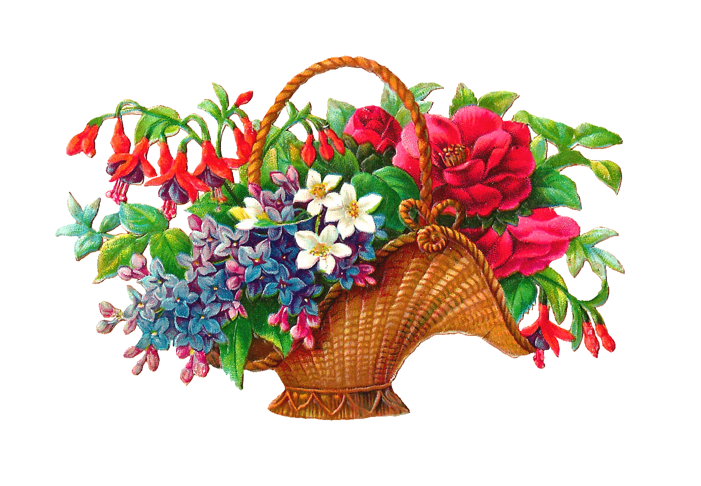 png library stock Flower