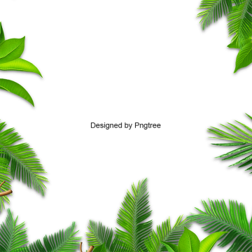 black and white library Background Green Png