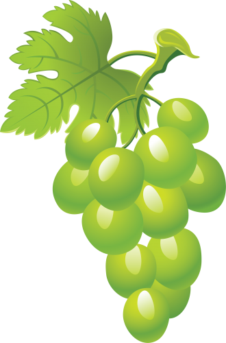png library Grape Seventeen