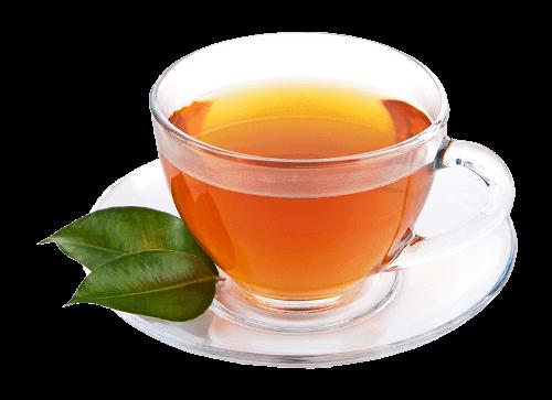 clipart freeuse stock Green Tea Cup transparent PNG
