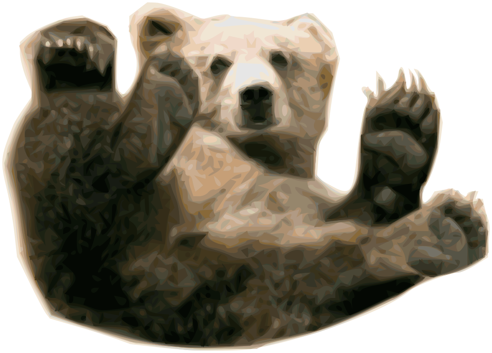 transparent library Grizzly bear clipart black and white. Brown frames illustrations hd