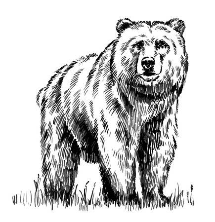 clip art black and white stock Grizzly bear clipart black and white. Station