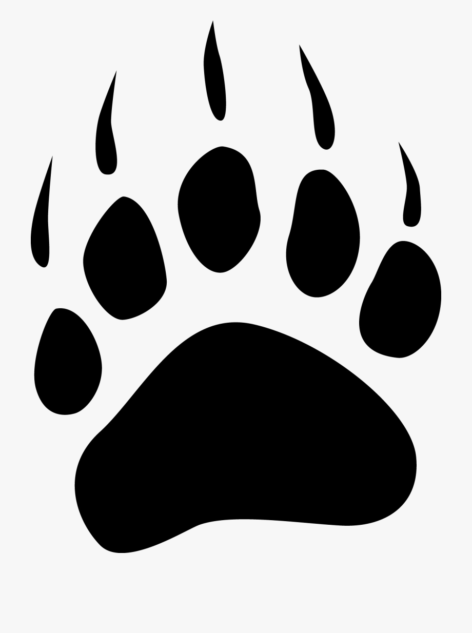clip black and white stock Grizzly clipart bear footprint. Clip art paw print