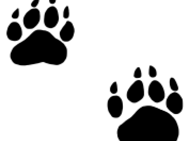vector black and white download Grizzly clipart bear footprint. Free on dumielauxepices net