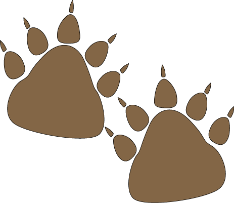 png royalty free stock Paw print desktop backgrounds. Grizzly clipart bear footprint