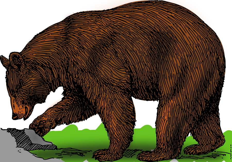 clip royalty free library Grizzly clipart clip art. Bear panda free images