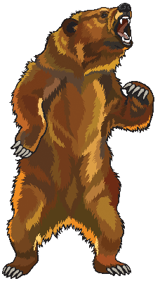 clip stock Grizzly Bear Clipart transparent