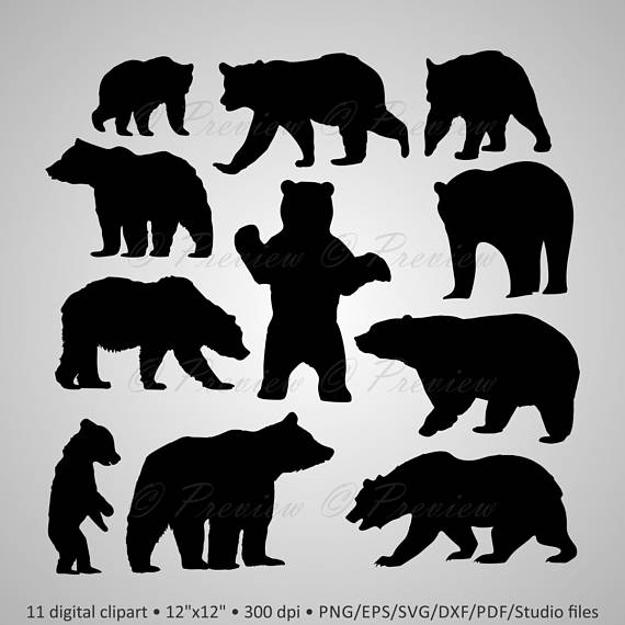graphic freeuse library Grizzly clipart wild bear. Buy get free digital
