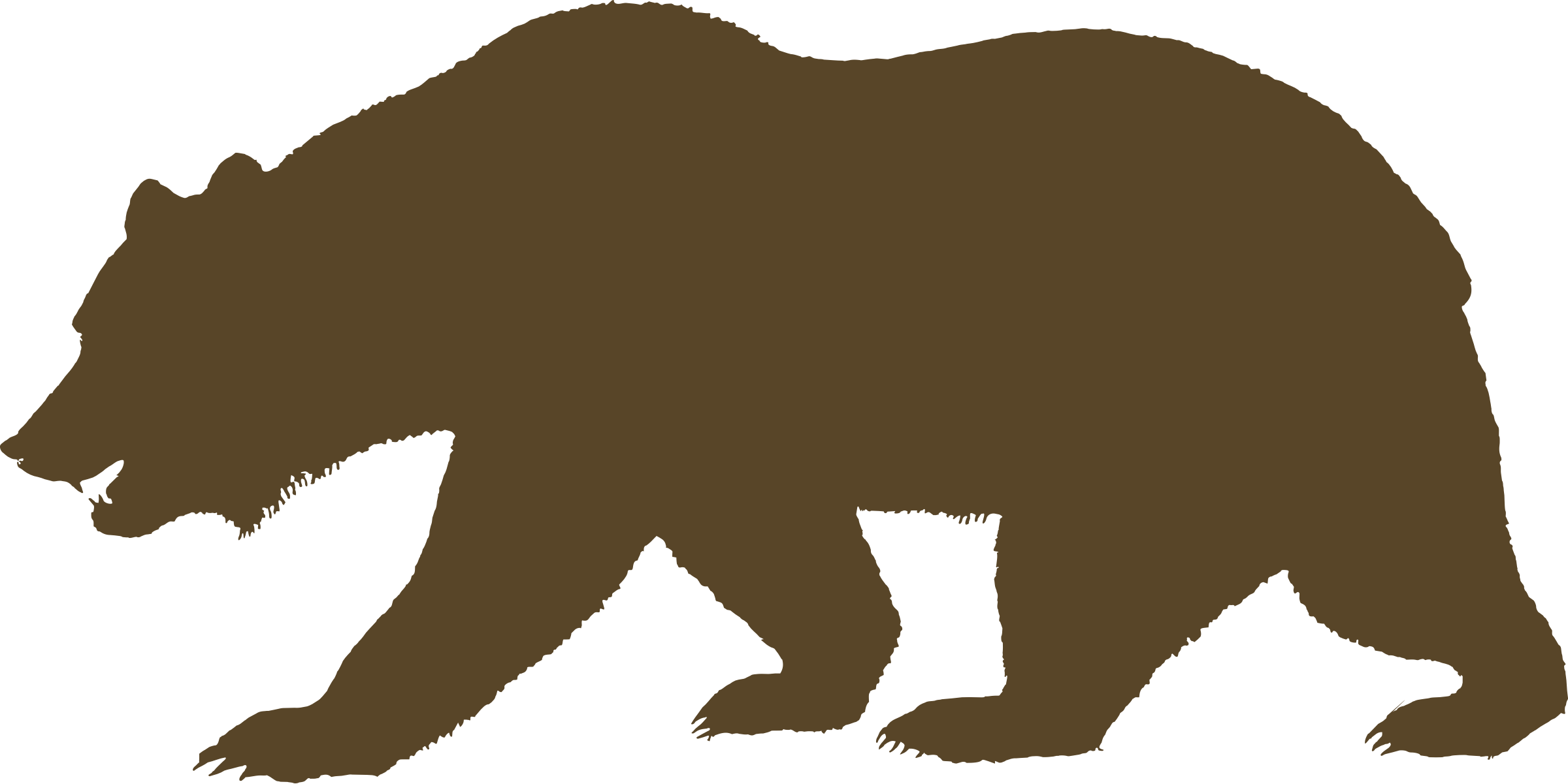 clipart royalty free Flag of california solid. Grizzly clipart wild bear