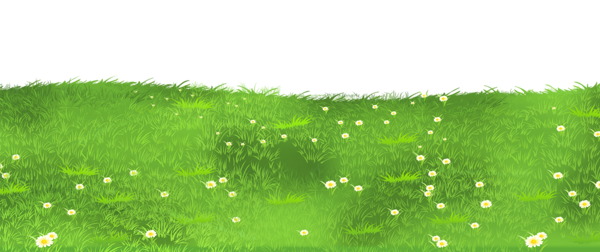 png freeuse stock Ground with daisies png. Lawn clipart tall grass.