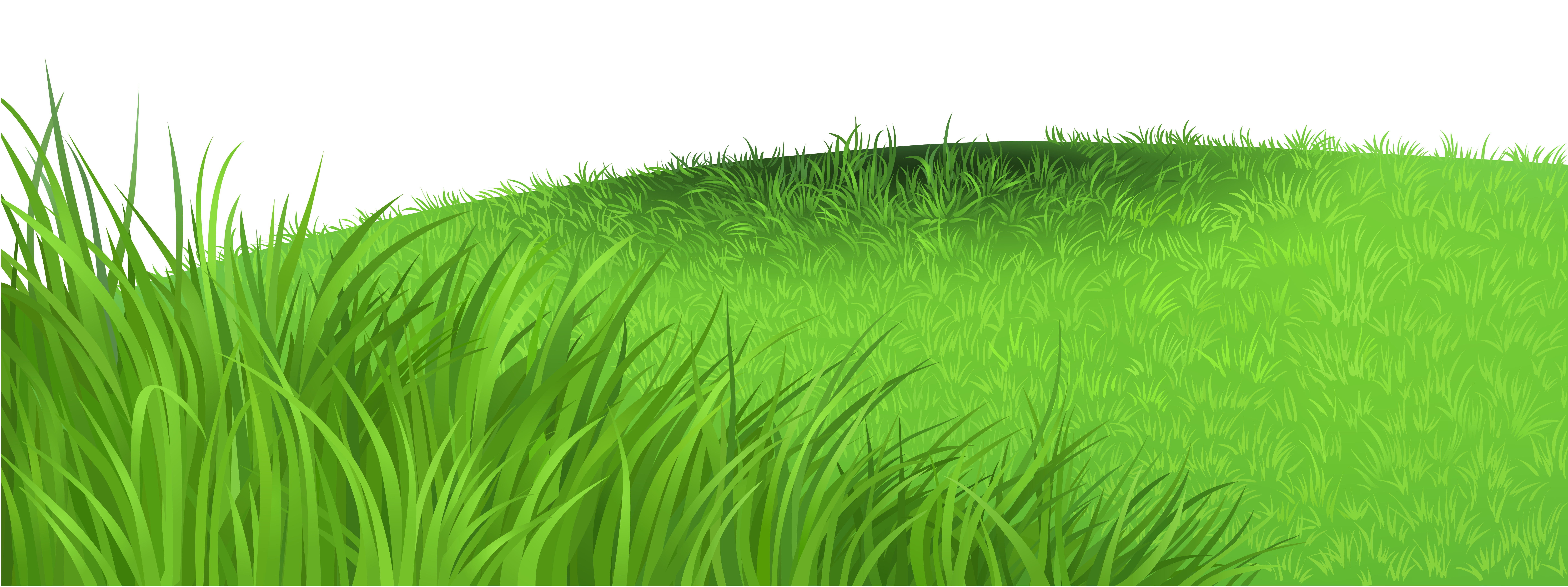 png free download Valley clipart grassland. Grass deco png picture.