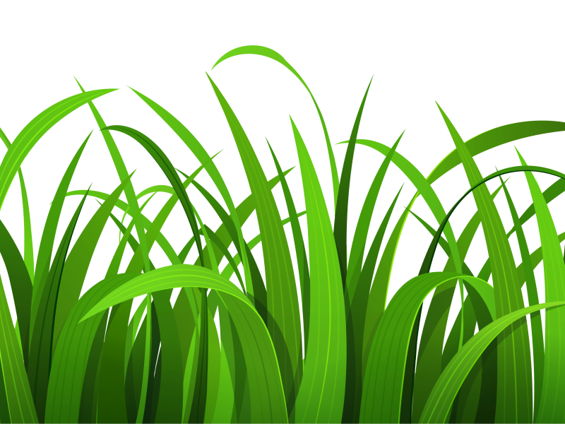 clip art download Ground clipart grass patch. X free clip art