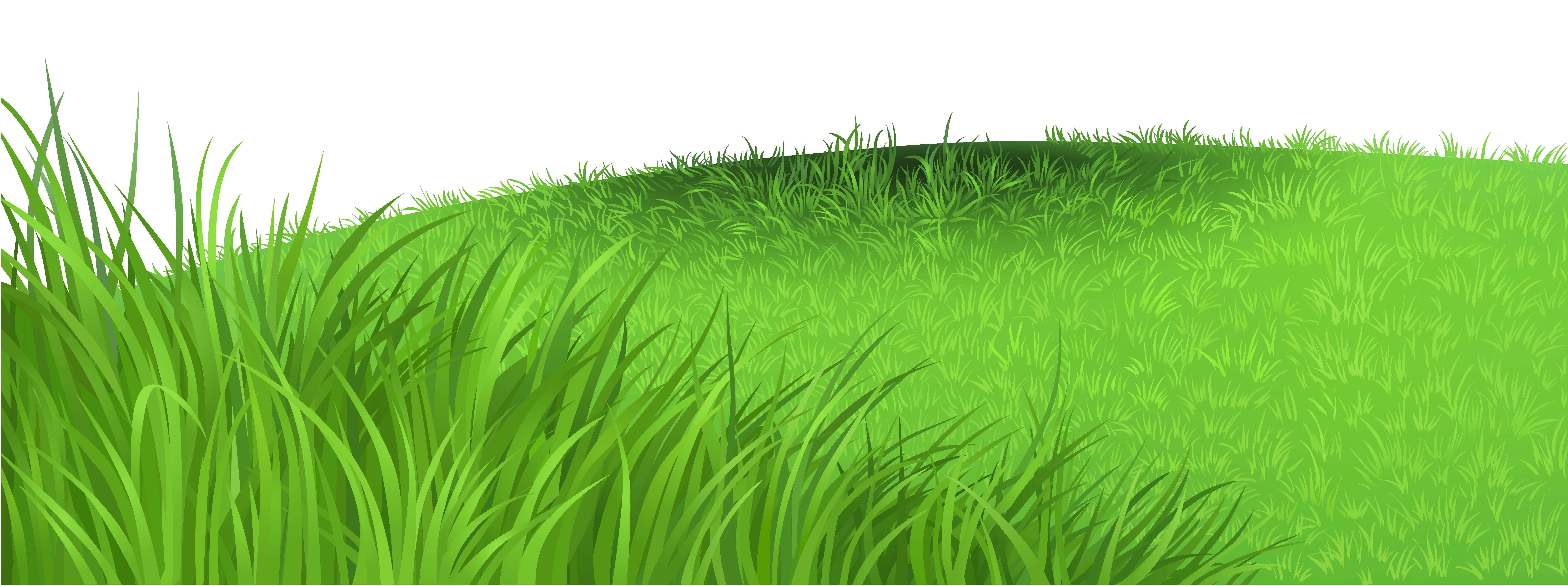 image Transparent . Ground clipart grass patch
