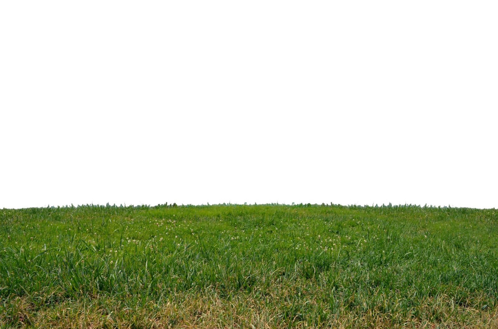 picture transparent Ground clipart plain land.  collection of png