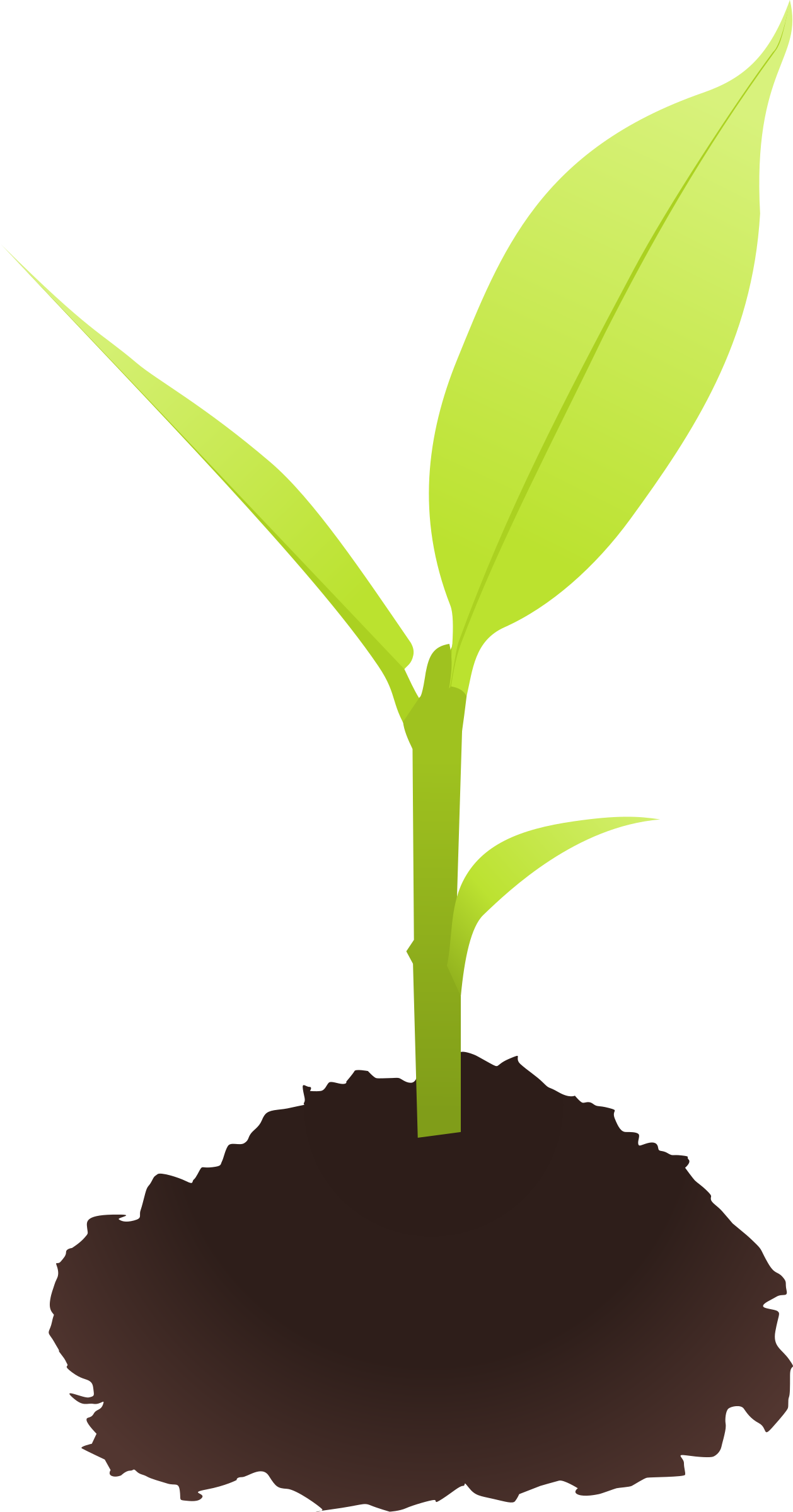 vector transparent stock Ground clipart soil. Small plant