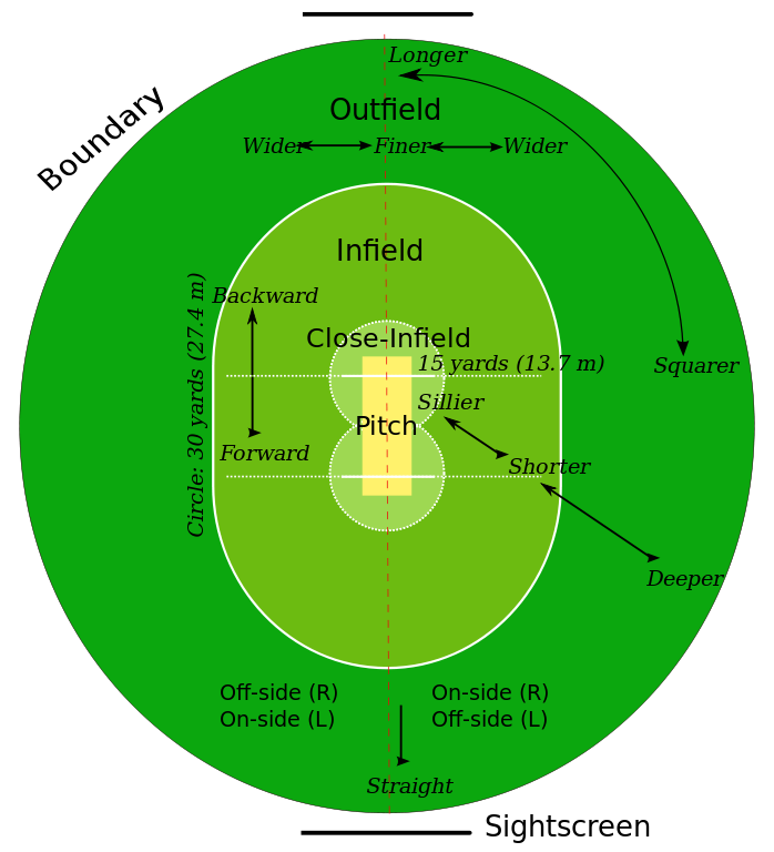 png library download ground vector cricket #113352283