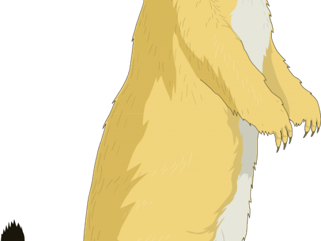 royalty free Free on dumielauxepices net. Groundhog clipart woodchuck